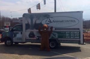 Alexandria Wildlife Control